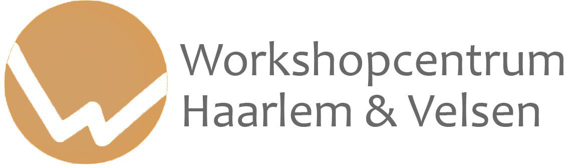 Workshop Centrum Haarlem & Velsen